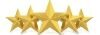 Five stars representing that five star rating this boca raton med spa received.